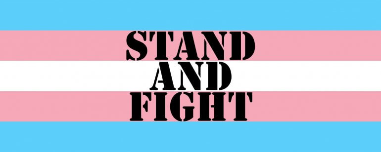 Transgender flag for stand and fight post