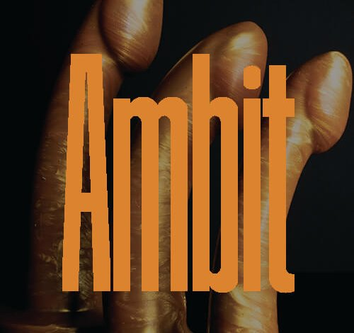 The Ambit Our Work To Make Is Bigger and Smaller