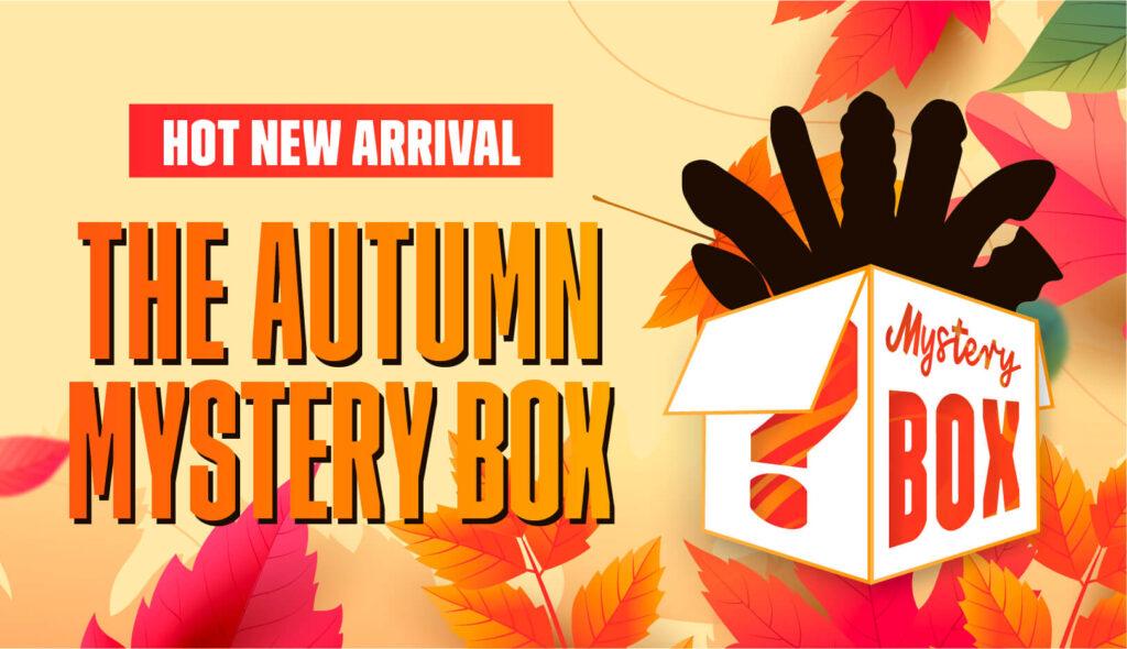 autumn-mystery-box-Blog-banner-779x448px